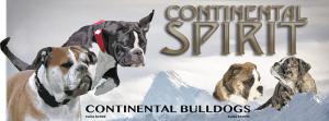 Continental Spirit